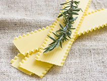 Lasagna sheets and fresh rosemary Royalty Free Stock Photos