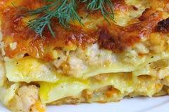 Lasagna. Traditional italian dish. Shallow DOF royalty free stock images