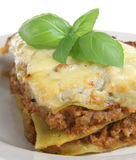 Lasagna Verdi Royalty Free Stock Photo