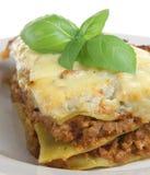 Lasagna Verdi Fotografia Stock Libera da Diritti
