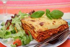 Lasagnaal forno Stock Fotografie
