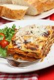 lasagne γεύμα Στοκ φωτογραφία με δικαίωμα ελεύθερης χρήσης