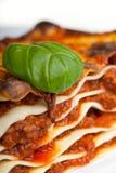Lasagne lizenzfreies stockfoto