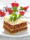 Lasagne Fotos de Stock Royalty Free