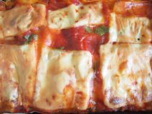 Lasagne Royaltyfria Bilder