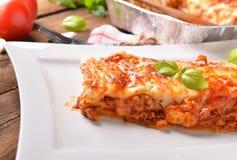 Lasagne bolognese Royaltyfri Fotografi