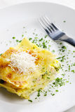 Lasagne with broccoli Stock Photography