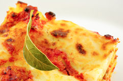 Lasagne, a classic Italian pasta casserole dish Royalty Free Stock Photography