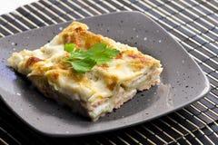 Lasagne degli spinaci immagine stock
