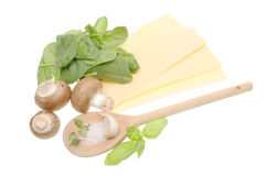 Lasagne Ingredients Stock Image
