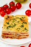 Lasagne italien. Photographie stock libre de droits