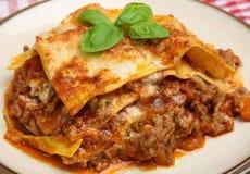 Lasagne o lasagne al forno tradizionali del manzo Fotografia Stock