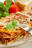 Lasagne with ragu. On dish Royalty Free Stock Photo