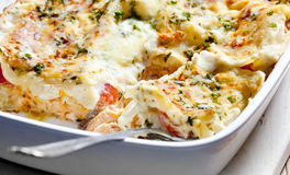 Lasagne with salmon Royalty Free Stock Photo