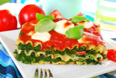 Lasagne with spinach and mozzarella Stock Image
