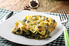 Lasagne with spinach and ricotta Stock Image
