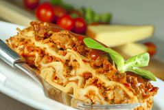 Lasagne. With tomato and vegetables and chesse on wood table royalty free stock photo