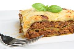Lasagne Verdi Royalty Free Stock Image