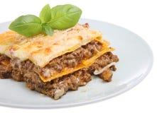 Lasagneal Forno Lizenzfreies Stockfoto