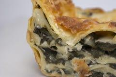 Lasanhas de queijo dos espinafres Imagem de Stock