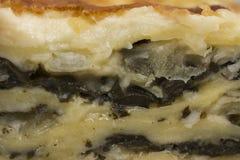 Lasanhas de queijo dos espinafres Fotografia de Stock Royalty Free