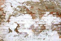 Lascado, descascando a pintura branca na parede de tijolo vermelho velha imagem de stock royalty free