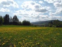 Lascape de la montaña fotografía de archivo