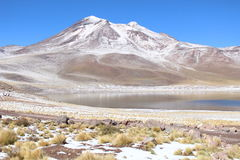 Lascar Volcano Royalty Free Stock Photography