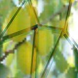 Lascas de vidro Fotos de Stock