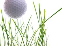 Lasci il golf del gioco del `s Fotografia Stock Libera da Diritti
