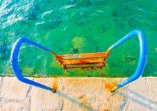 Lascia la nuotata Fotografie Stock Libere da Diritti