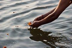 Lasciando un'offerta del fiore durante il culto quotidiano Fotografia Stock