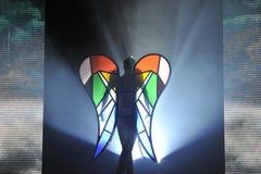 Lasciare angelo Immagini Stock Libere da Diritti