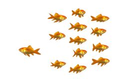 Lasciare i pesci Immagine Stock