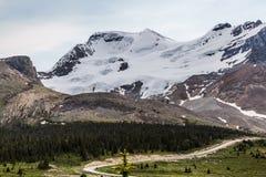 Lasciate nevicare, parte della strada panoramica di Icefield Fotografia Stock Libera da Diritti