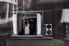 Lascimi fuori dalla TV Fotografia Stock Libera da Diritti