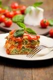 Lasegne caseiro com queijo e espinafre de Ricotta Fotografia de Stock Royalty Free