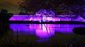 Laser-projektioner på kungliga Kew trädgårdar, under jultid lager videofilmer