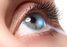 Laser vision correction. Woman`s eye. Human eye. Woman eye Royalty Free Stock Images