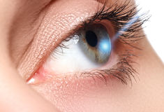 Laser-visionkorrigering Öga för kvinna` s för eos-öga för kamera 20d skytte för makro mänskligt härligt kvinnabarn för blått öga Royaltyfri Fotografi