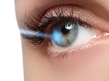 Laser-Visions-Korrektur Frau ` s Auge Menschliches Auge Schönes junges blaues Auge des Frauenauges? stockbilder