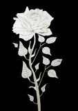 Lasercut rose on a black background Royalty Free Stock Image