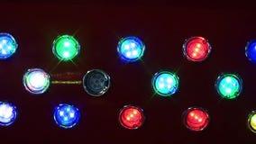 Laserlichten in een Disco stock footage