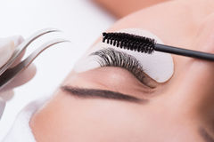 Lash lengthening treatment at beauty salon Royalty Free Stock Images