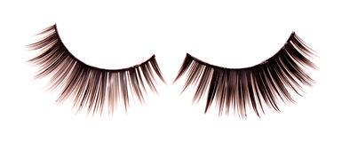 lashes royalty free stock photo