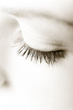 Lashes. Female eye closed,  close up , studio shot, desaturated Royalty Free Stock Photography