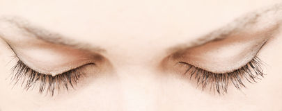 Lashes Royalty Free Stock Images