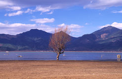 Lashi湖 免版税库存照片