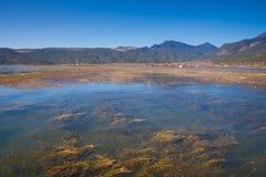 Lashi lake landscape Stock Image