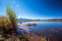 Lashihai湖 库存图片